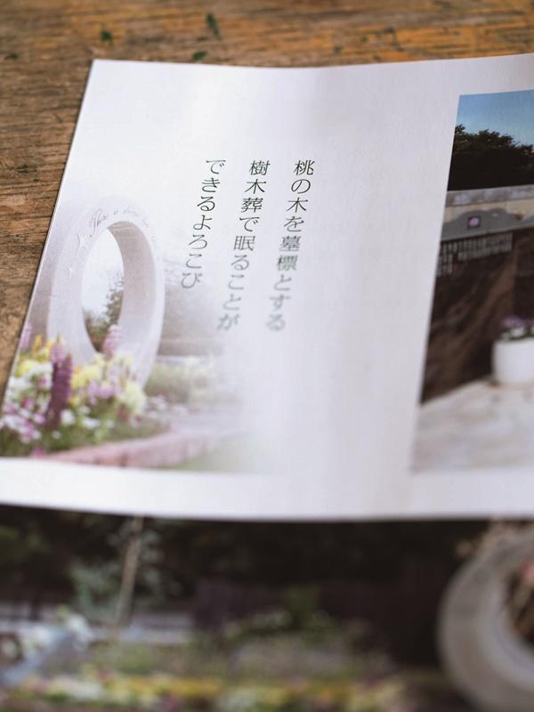 s_MG_3246