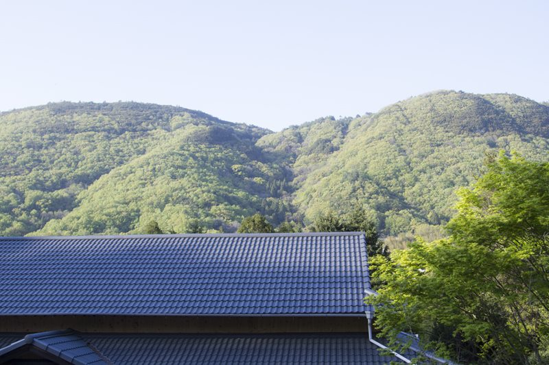 web-kiji0013