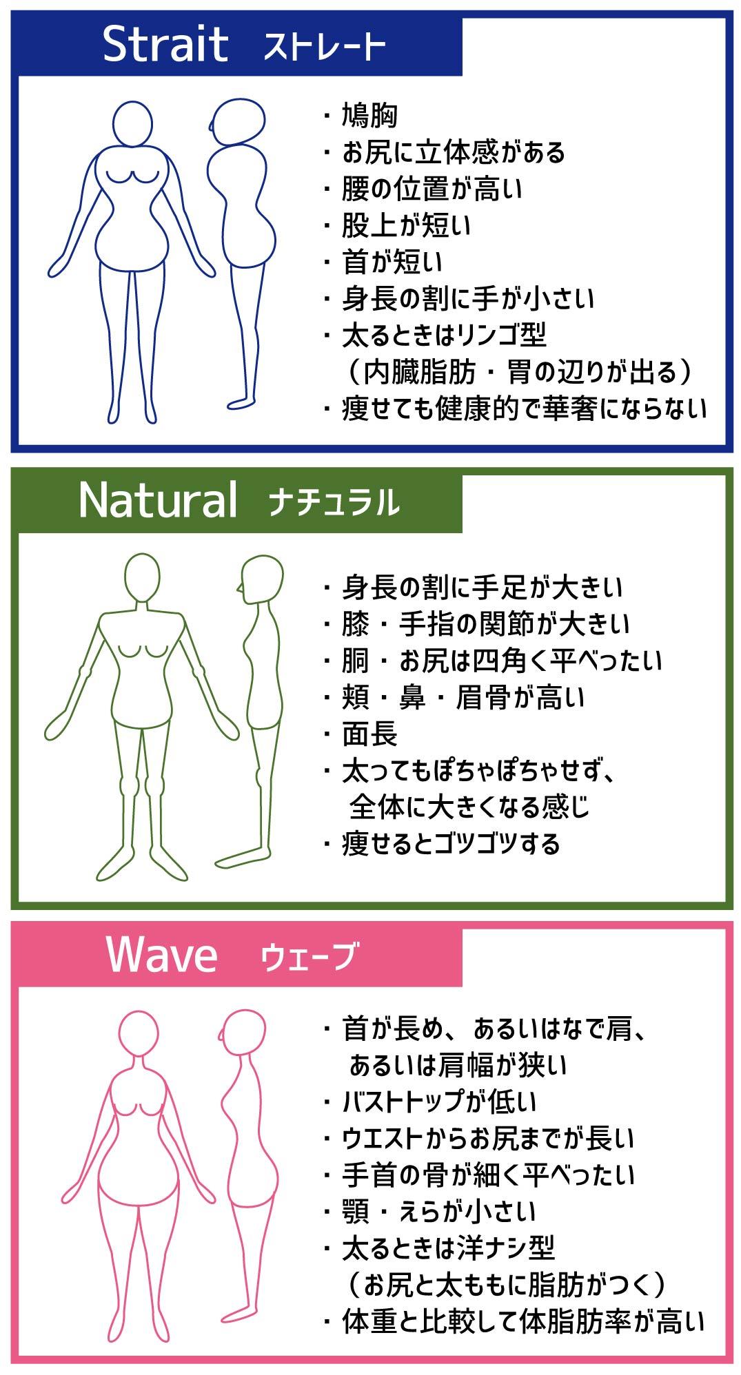 骨格タイプ解説Vol.1